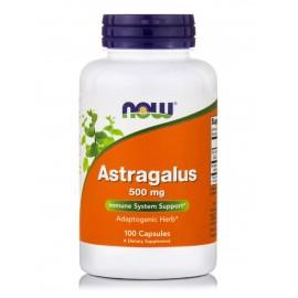 Astragalus 500mg -100caps